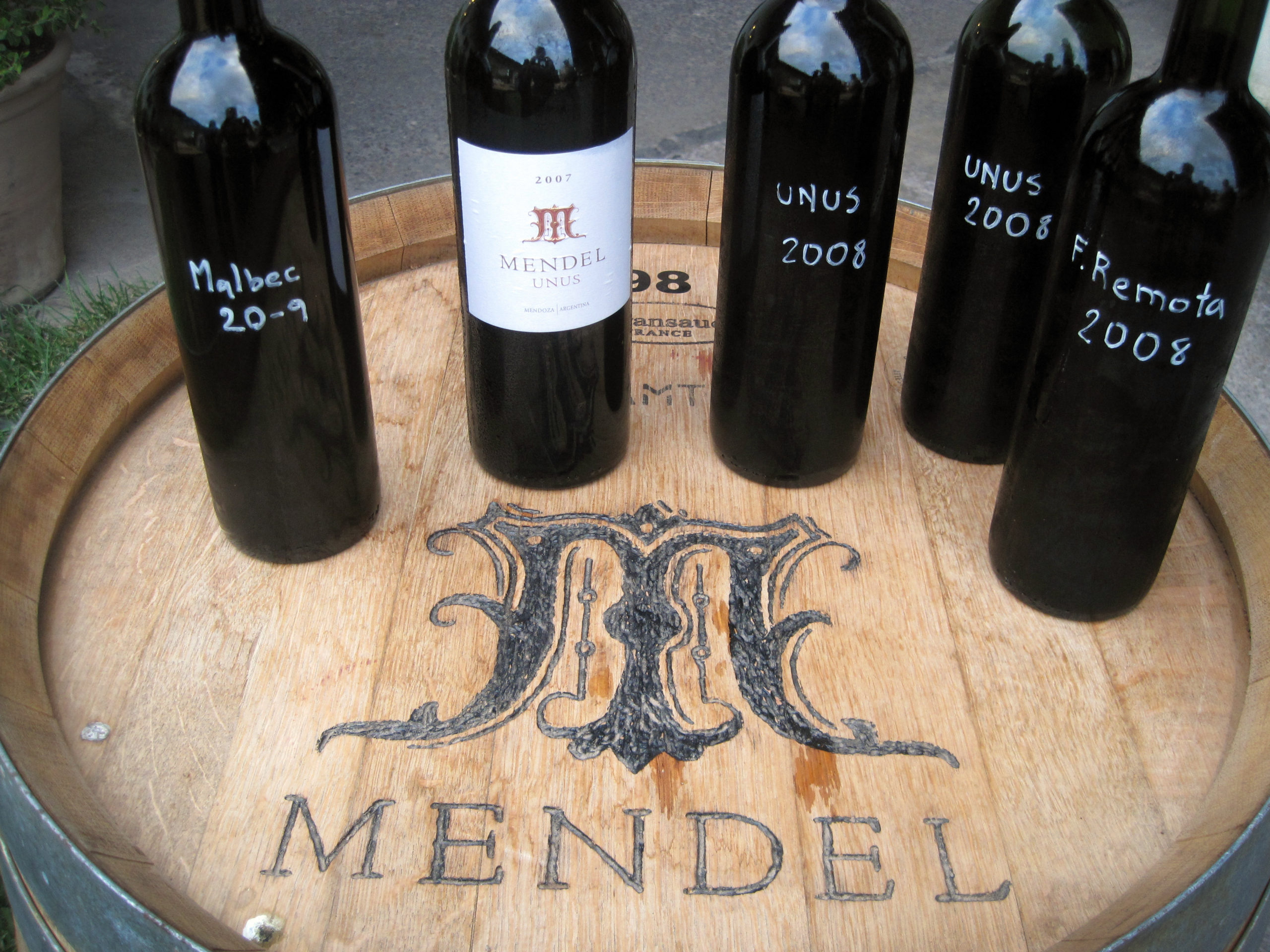 Argentinian Cabernet Sauvignon Wines from